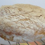 Pane Rustico con Poolish